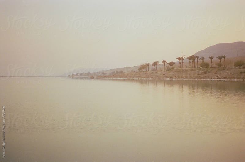 A film photo of Dead Sea coast by Anna Malgina for Stocksy United