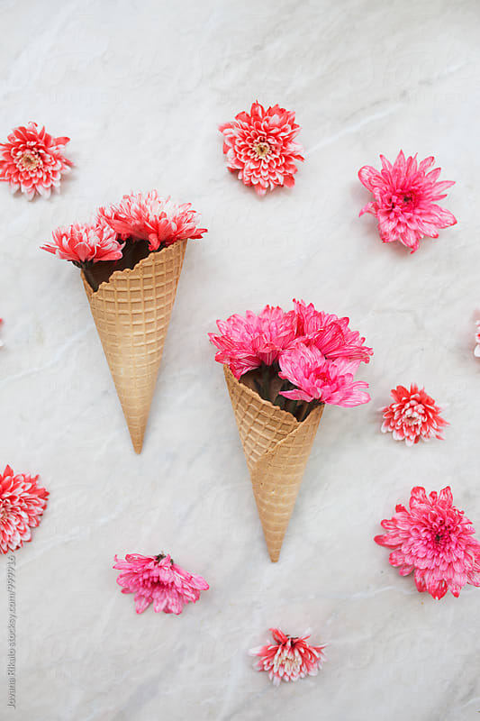 Flowers in ice cream cone by Jovana Rikalo for Stocksy United