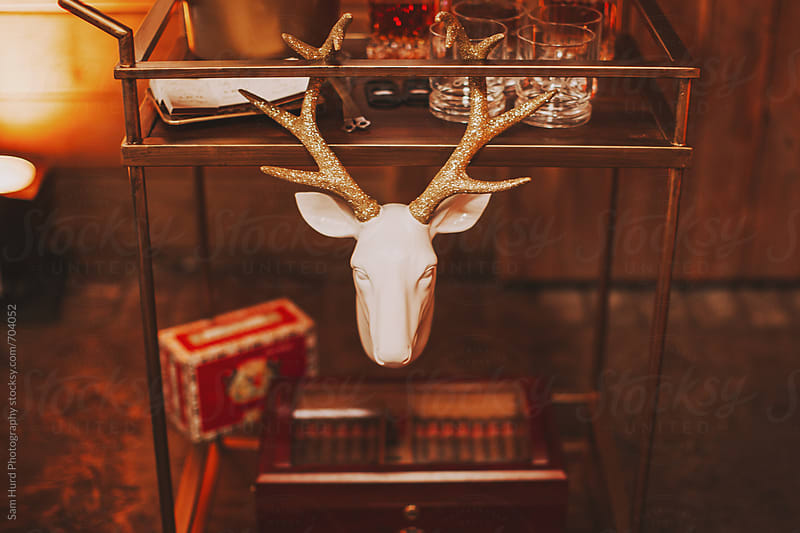 faux deer head warm interior photos by Sam Hurd Photography for Stocksy United
