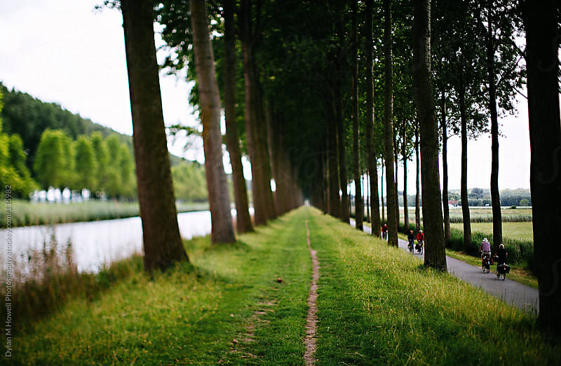 A grass path along canal in Belgium. by Dylan M Howell Photography for Stocksy United