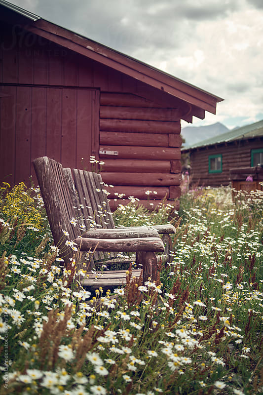 Two rustic outdoor chairs overgrown with weeds by Angela Lumsden for Stocksy United