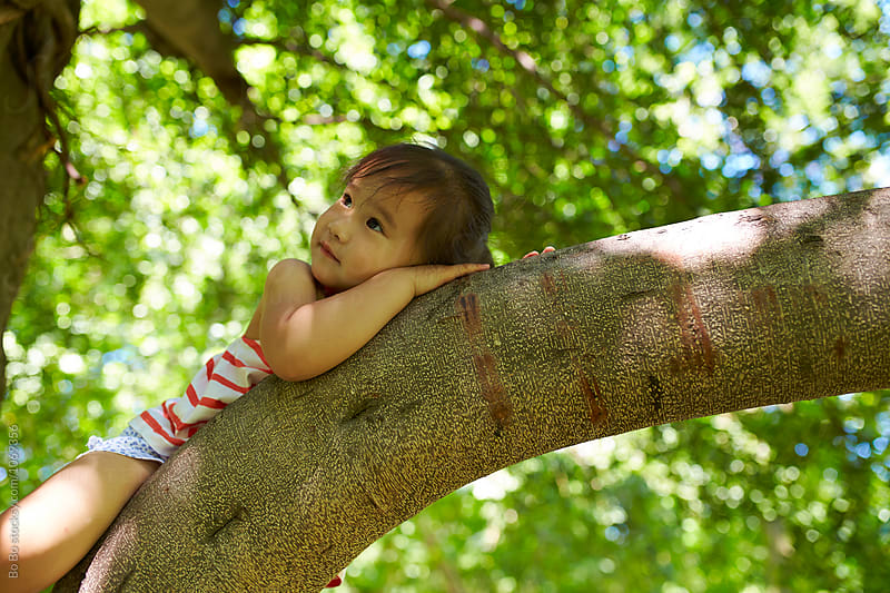 lovely little girl sleeping on the tree by cuiyan Liu for Stocksy United