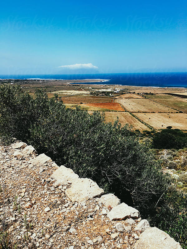 Italy - Sicilian Island Countryside on Sunny Day by VISUALSPECTRUM for Stocksy United