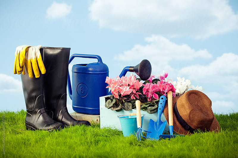 Gardening Equipment by Lumina for Stocksy United