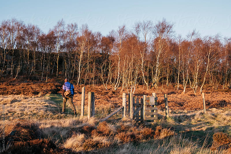 Male walking on a hillside at sunset. Upper Padley, Derbsyhire, UK. by Liam Grant for Stocksy United