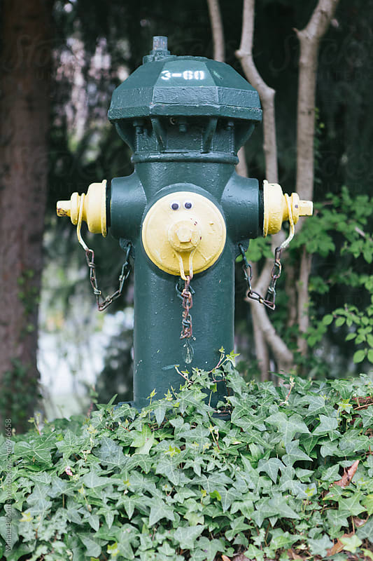 Adorable yellow and green fire hydrant with a human face by Mihael Blikshteyn for Stocksy United