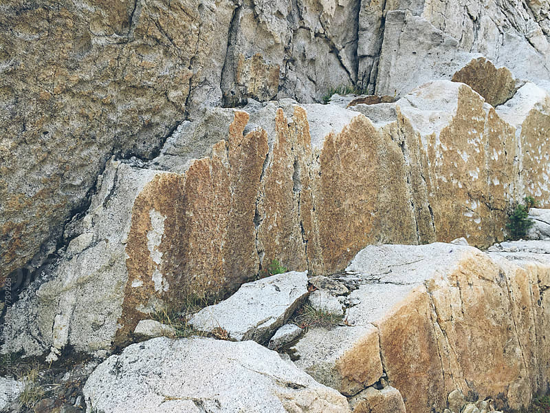Detail of weathered rock formations in the Central Cascades by Paul Edmondson for Stocksy United