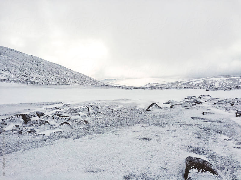 The Cairngorm Plateau in Winter by Neil Warburton for Stocksy United