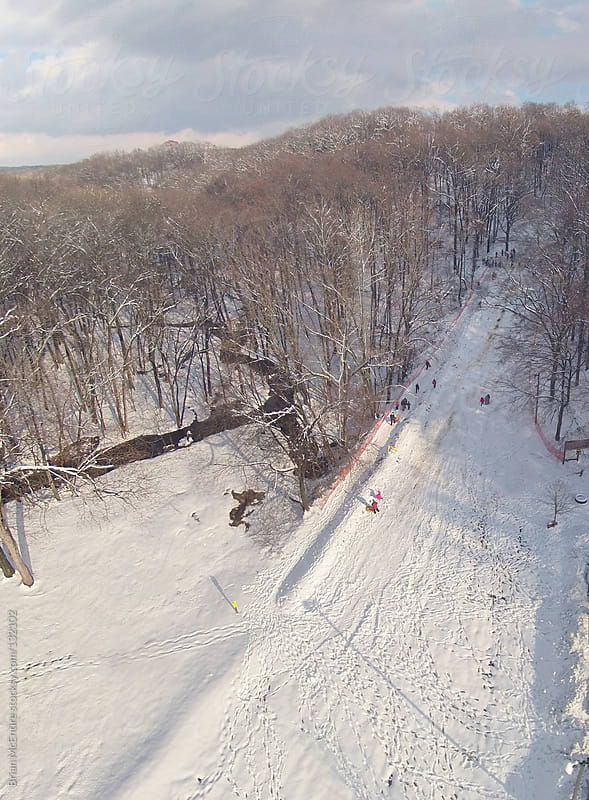 Aerial Photo of People Sledding on Public Hill in Wooded Area by Brian McEntire for Stocksy United