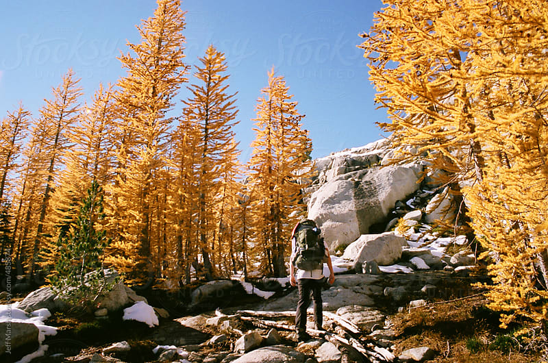 Hiking in Fall colors by Jeff Marsh for Stocksy United