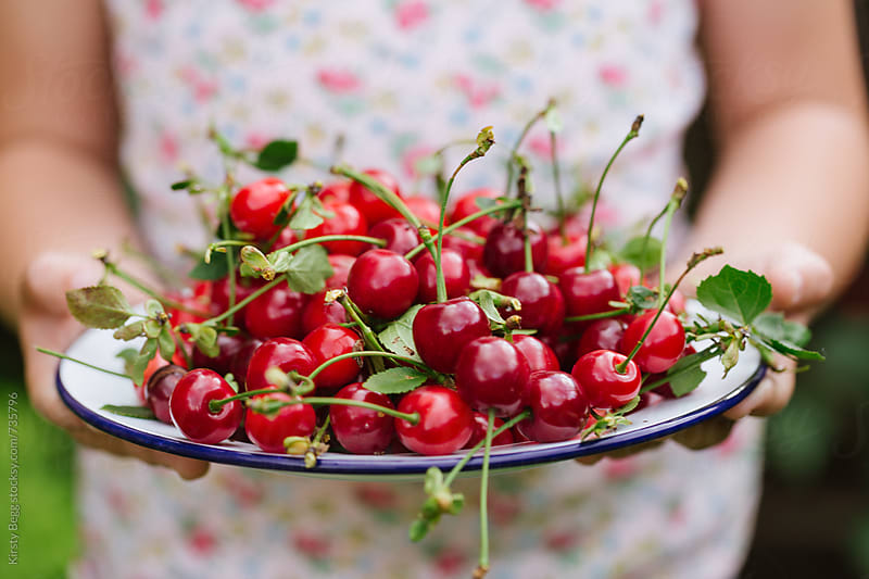 Horizontal shot of girl holding a plate of freshly picked cherries by Kirsty Begg for Stocksy United