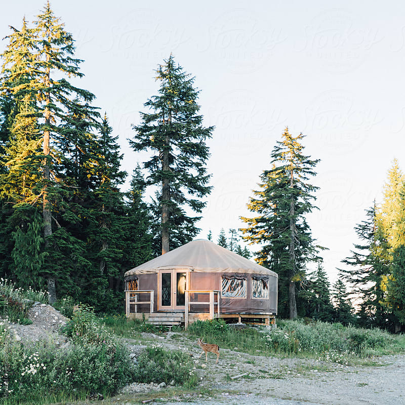 Yurt by Michael Overbeck for Stocksy United