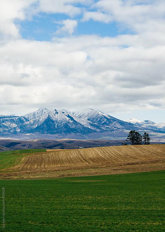 Hokkaido view by jira Saki for Stocksy United