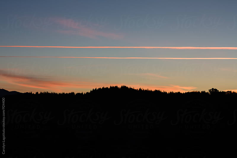 Contrails in the sky before the sun rises by Carolyn Lagattuta for Stocksy United