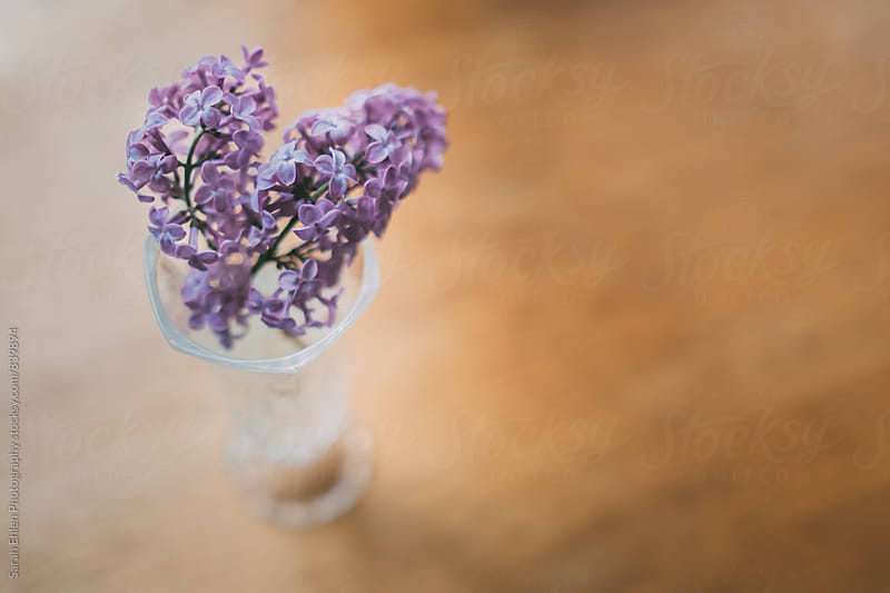 A vase of purple Lilac flowers on a wooden table by Sarah Ehlen Photography for Stocksy United