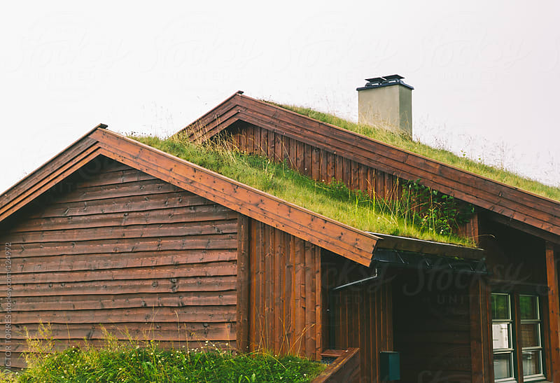 Typical Norwegian Cabin with Grass on the Ceiling by VICTOR TORRES for Stocksy United