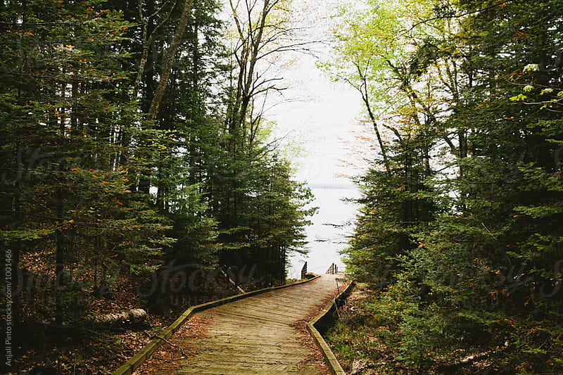 Madeline Island, Wisconsin by Anjali Pinto for Stocksy United