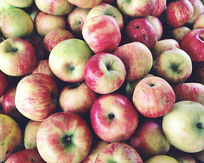 Fresh delicious apples sold at a local farmer's market. by Greg Schmigel for Stocksy United
