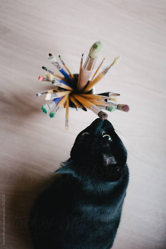 A black cat sniffing on  a cup with pencils by Ivo de Bruijn for Stocksy United