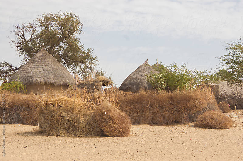 A village in  Thar desert , Sindh, Pakistan by Agha Waseem Ahmed for Stocksy United