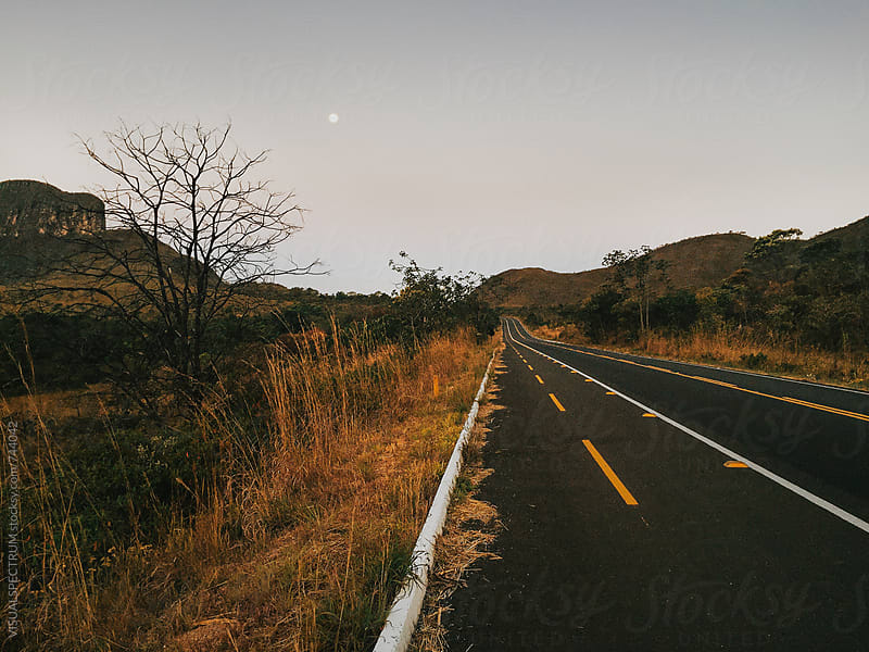 Full Moon Over Tarmac Road in National Park by VISUALSPECTRUM for Stocksy United