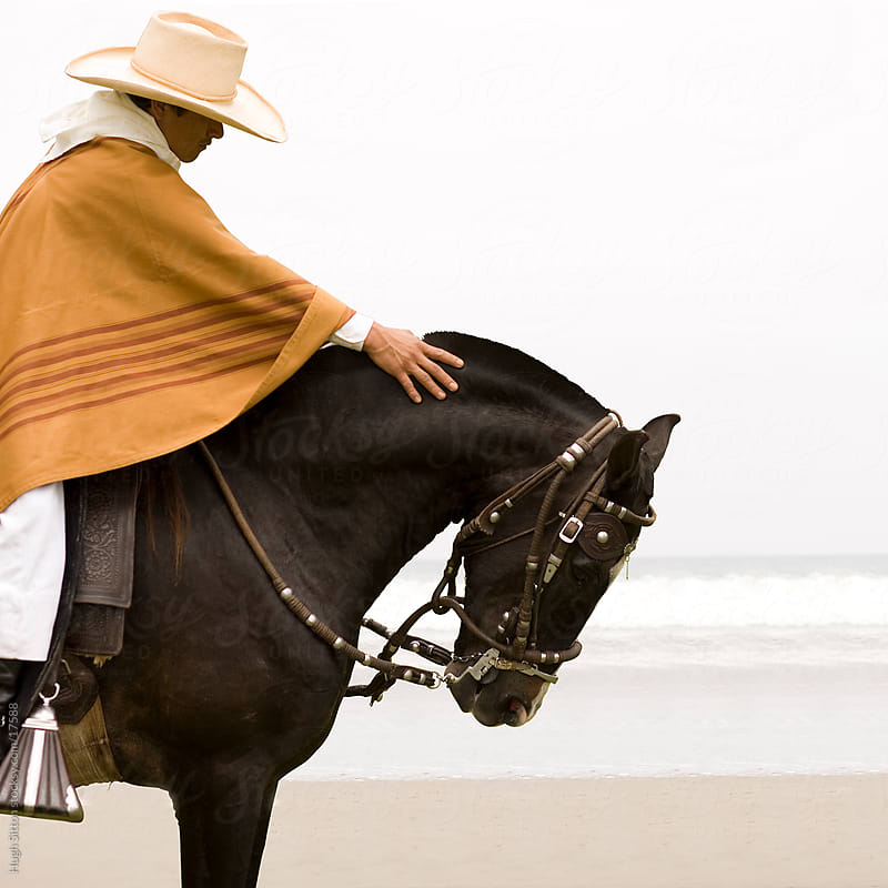 Peruvian rider with his Paso horse. Lima. Peru. by Hugh Sitton for Stocksy United