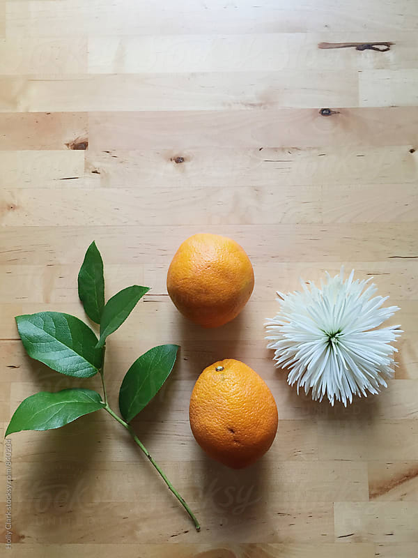 Still life of oranges, flower and greenery on a table by Holly Clark for Stocksy United