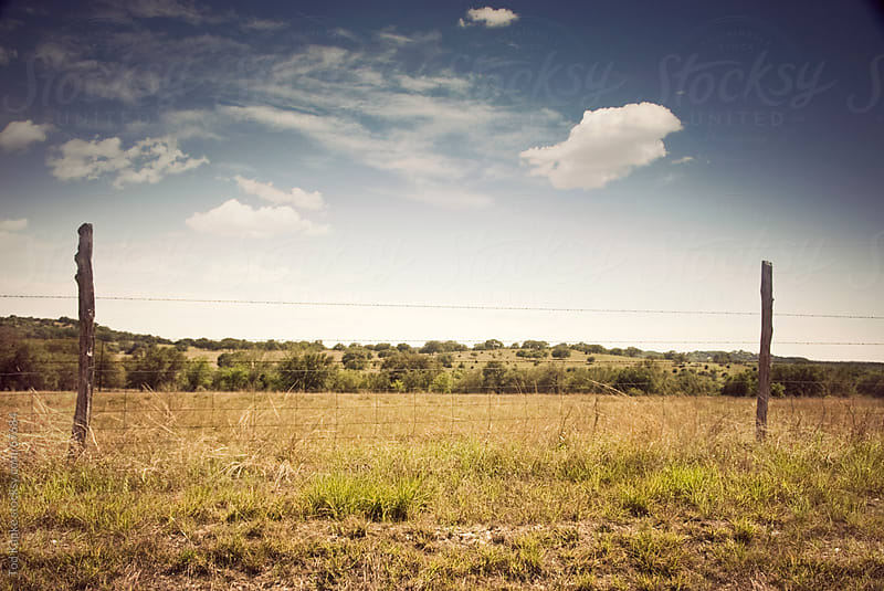 texas hill country  by Tod Kapke for Stocksy United