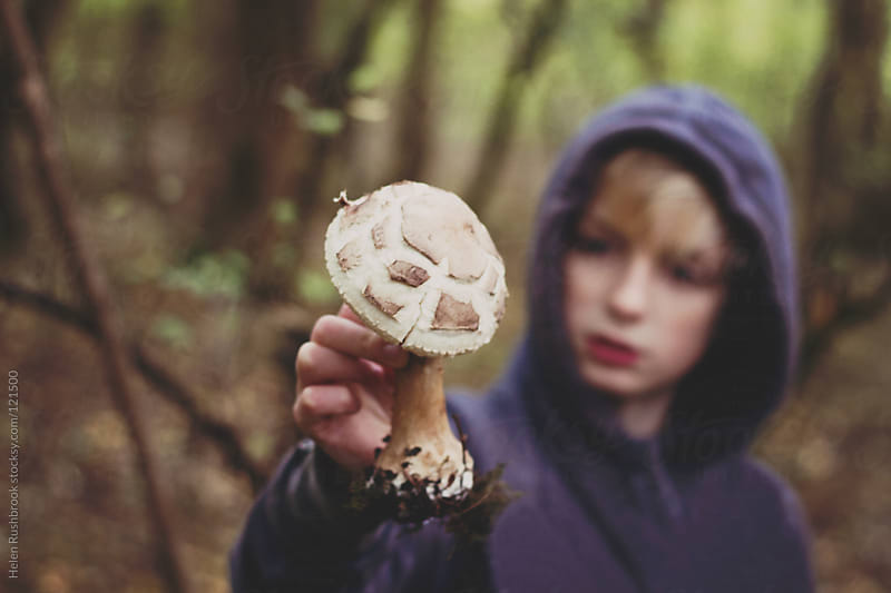 Boy with a large wild mushroom by Helen Rushbrook for Stocksy United