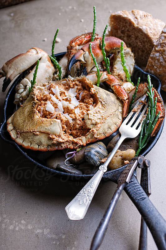 Dressed crab served with crusty bread.Appetizer.  by Darren Muir for Stocksy United