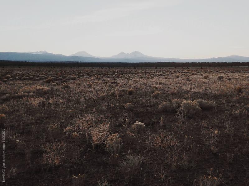 High Desert Sunset by Kevin Gilgan for Stocksy United