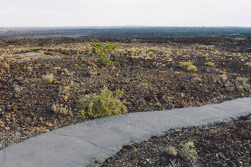 Paved footpath through arid volcanic landscape by Paul Edmondson for Stocksy United