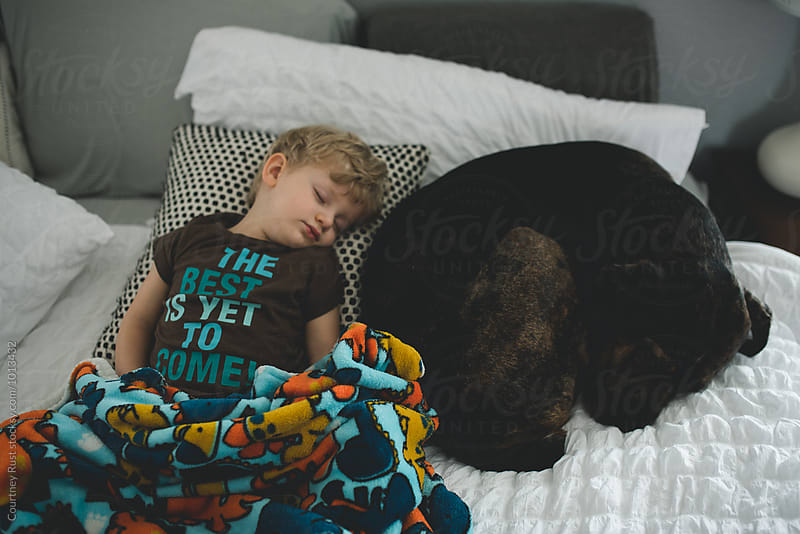 Boy sleeping with Dog by Courtney Rust for Stocksy United