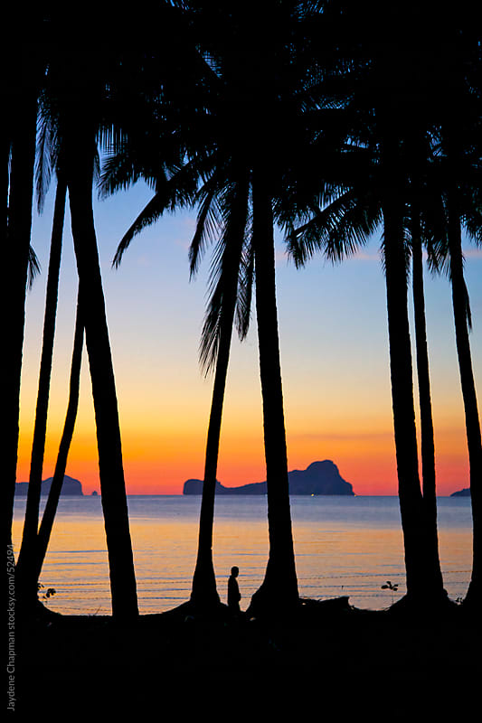 Dramatic sunset, looking through palm trees, Las Cabanas Beach, Palawan Island, Philippines by Jaydene Chapman for Stocksy United