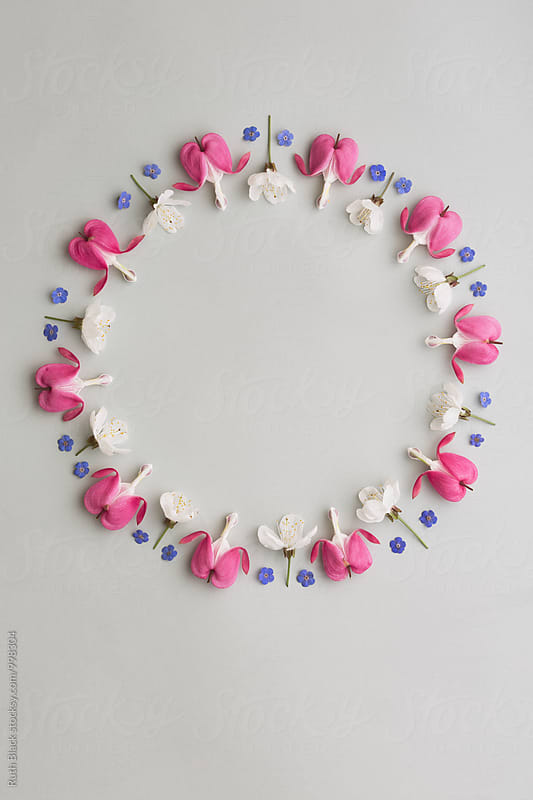 Flower frame by Ruth Black for Stocksy United