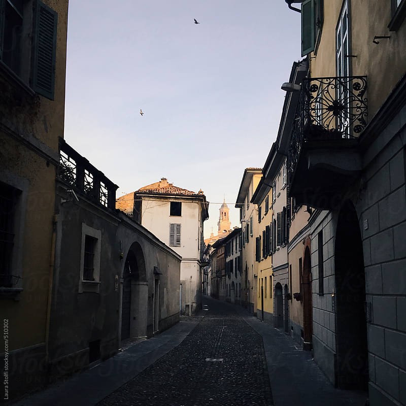 Birds flying in the sky over old narrow street in downtown quartier in Italy by Laura Stolfi for Stocksy United