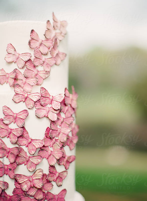 Butterfly adorned cake detail by Marta Locklear for Stocksy United
