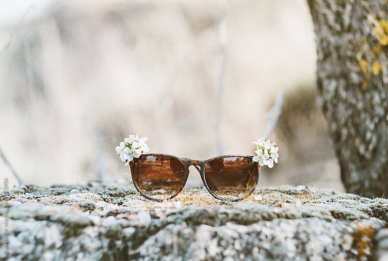 Spring flowers decorating sunglasses. by Eva Plevier for Stocksy United