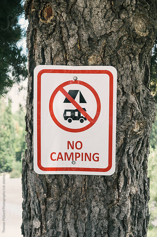 No camping sign on a tree near Hanmer Springs, New Zealand.