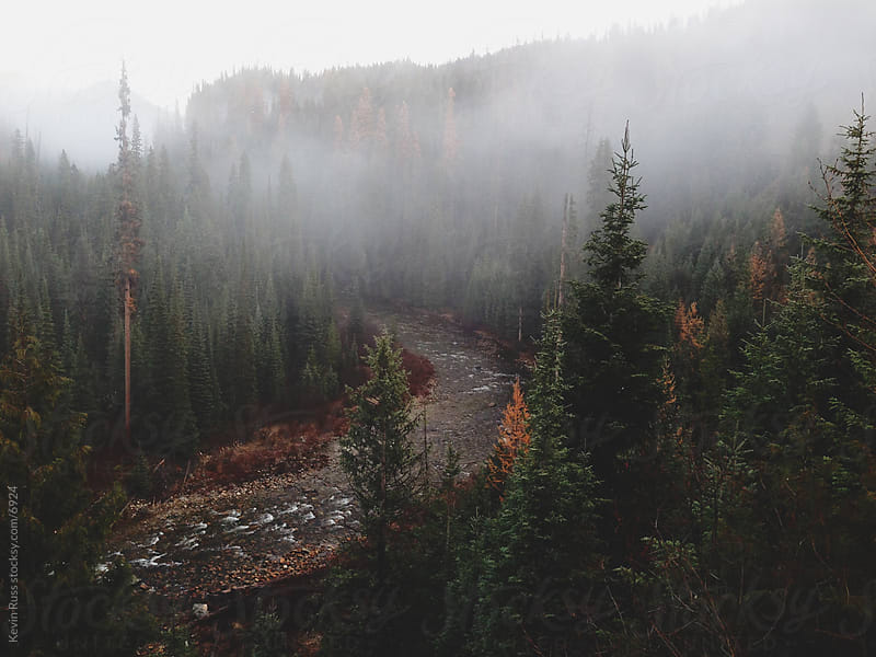 Winding Foggy Forest River by Kevin Russ for Stocksy United