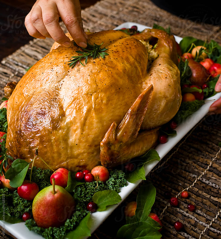 Dressing Turkey by Jill Chen for Stocksy United