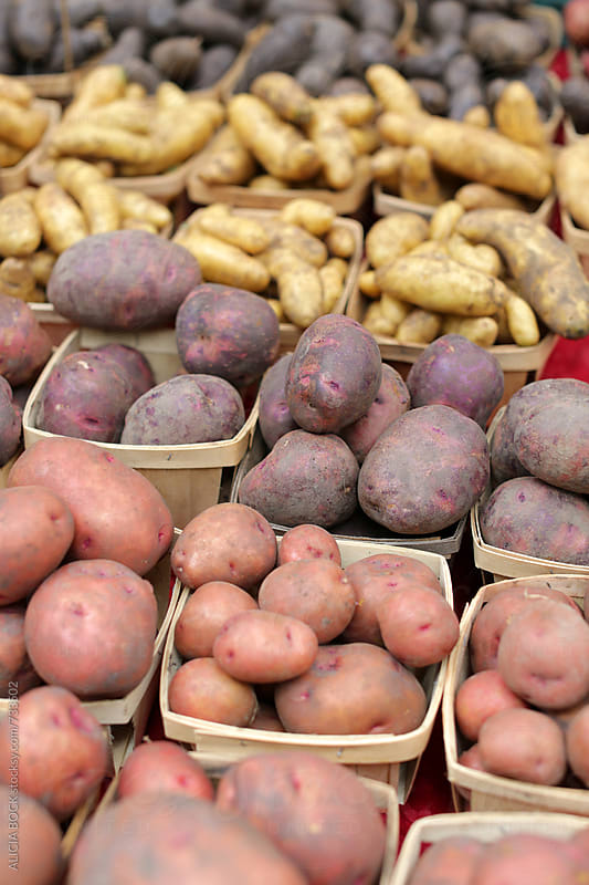 Rows Of Colorful Potatoes For Sale At A Farmer's Market by ALICIA BOCK for Stocksy United
