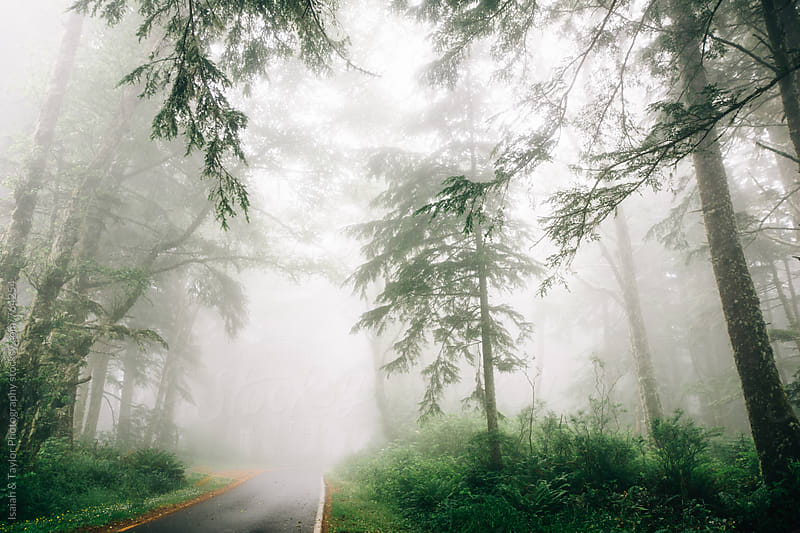 Misty morning street by Isaiah & Taylor Photography for Stocksy United