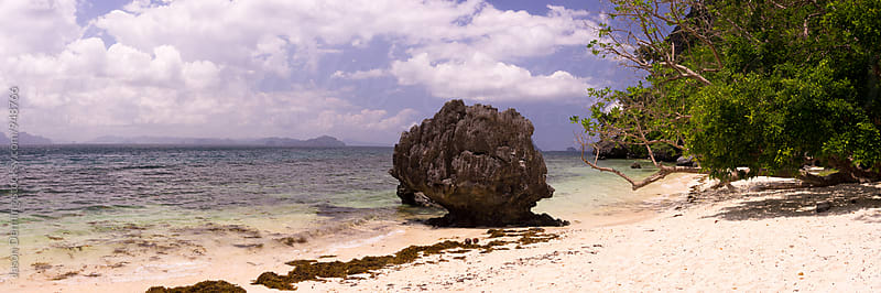 Tropical Beach by Jason Denning for Stocksy United