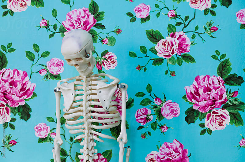 skeleton by jira Saki for Stocksy United