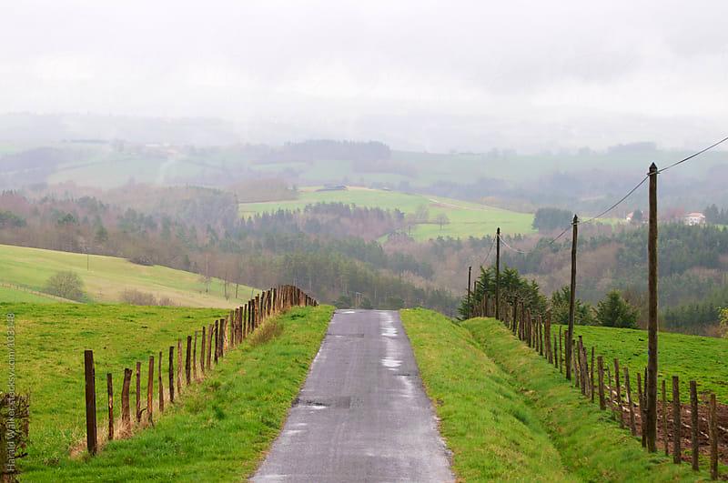 Misty morning landscape by Harald Walker for Stocksy United