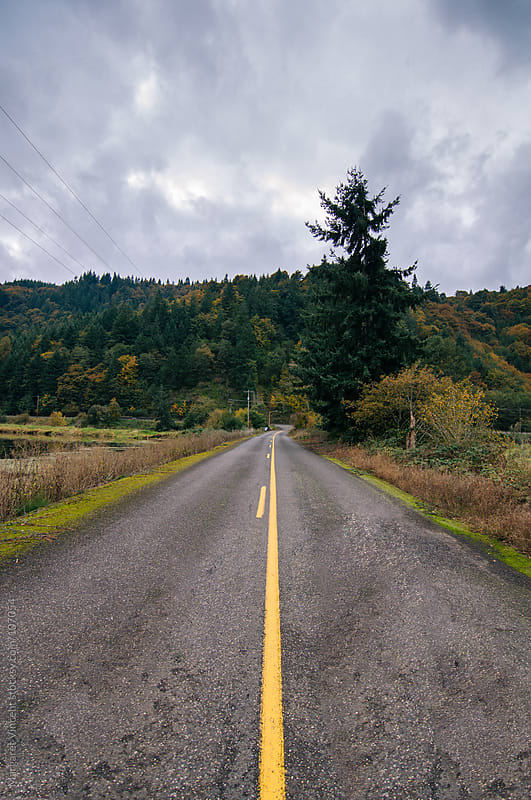 the view down an open road by Margaret Vincent for Stocksy United