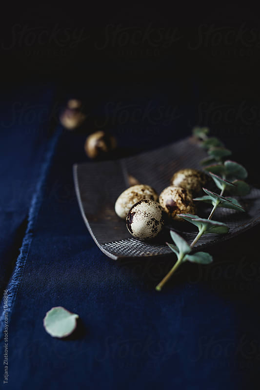 Quail eggs with eucalyptus by Tatjana Ristanic for Stocksy United