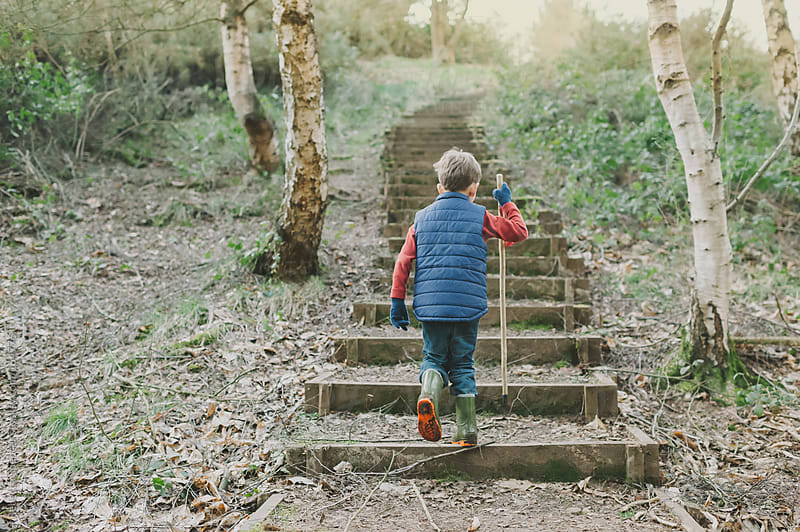 Boy climbing steps in woods by Rebecca Spencer for Stocksy United
