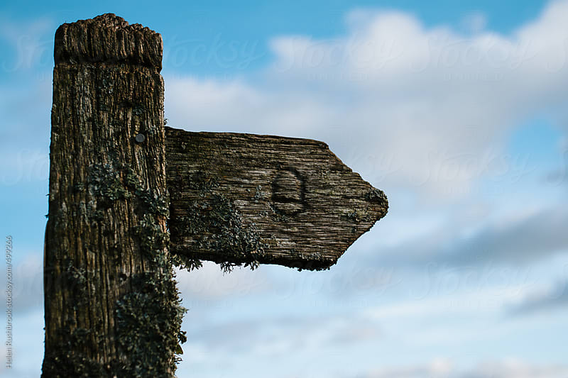 A lichen-covered countryside way-marker by Helen Rushbrook for Stocksy United
